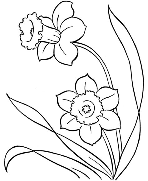 flowers for beginners an coloring book with easy and relaxing coloring pages gift for beginners books pix for gt simple flower drawings embroidery
