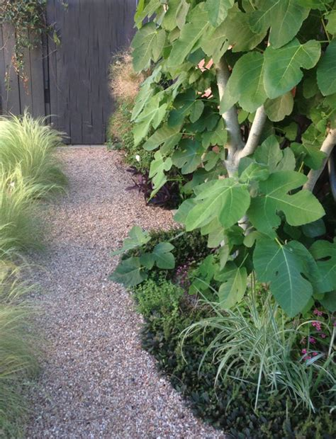 diy garden paths  backyard walkway ideas  garden glove