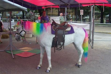 unicorn themes mozilla hire a one of a kind pony party petting zoo in