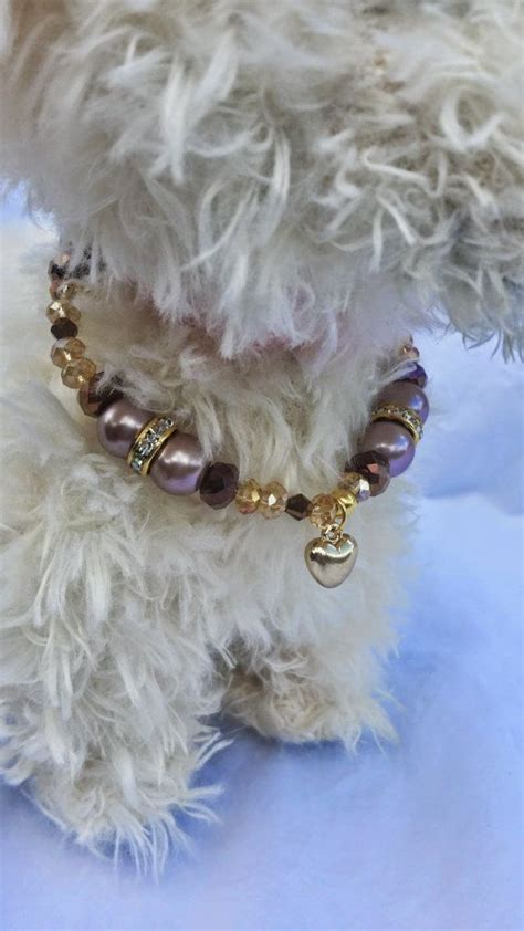 necklace for dogs 25 best ideas about necklace on choke collar jewelry and