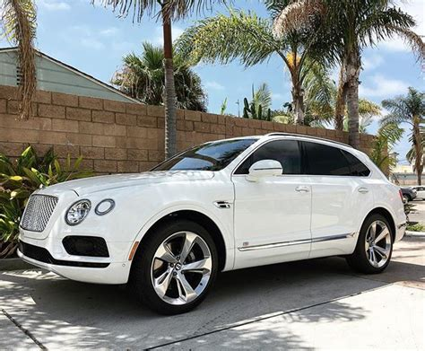 suv bentley 25 b 228 sta bentley suv id 233 erna p 229 bentley