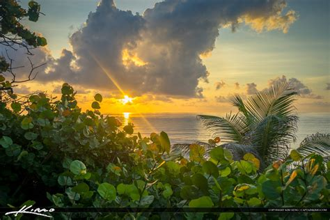 beautiful images beautiful sunrise boca raton beach florida