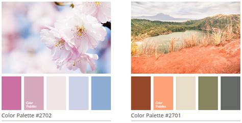 color scheme from image 6 awesome color palette generators egrappler