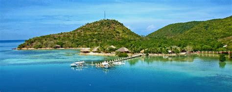 dive resorts diving philippines padi courses island vacations