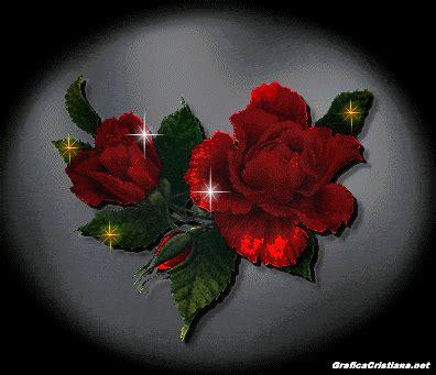 imagenes de rosas rojas animadas flores animadas lindas rosas pinterest google and search