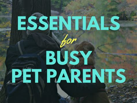Parenting You Must Products For Busy by 6 Must Haves For Busy Pet Parents Always On The Go