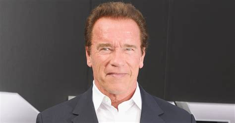 arnold schwarzenegger arnold schwarzenegger doesn t give a if you agree