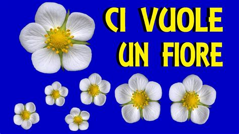 testo di ci vuole un fiore ci vuole un fiore con testi canzoni per bambini
