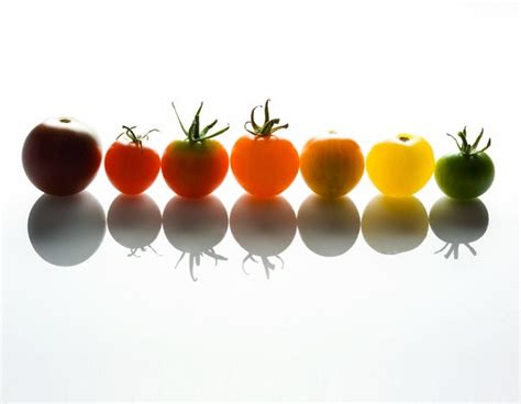 Green Multicolour Tomato T1310 1 seeds bulbs multicolour cherry tomato pack 10 varieties summer specials was sold for r59