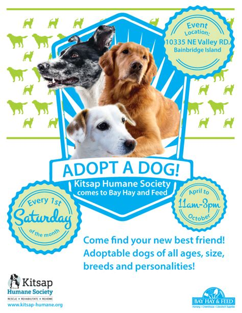 puppy adoption events pet adoption event flyer www pixshark images galleries with a bite