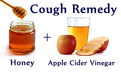 the production of vinegar from honey classic reprint books effective cough remedy simply and naturally