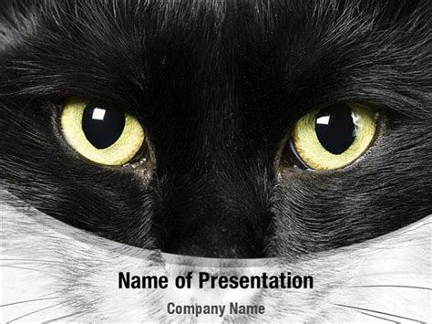 Black Cat Powerpoint Templates Black Cat Powerpoint Backgrounds Templates For Powerpoint Cat Powerpoint Template