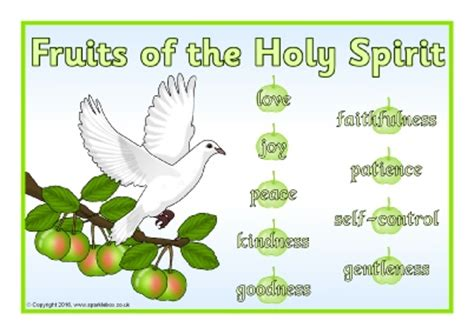 7 fruits of the holy spirit catholic gifts and fruits of the holy spirit with meaning gift ftempo