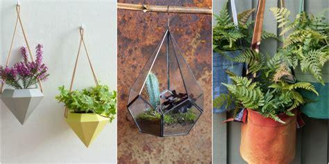 indoor hanging indoor hanging plants www pixshark com images