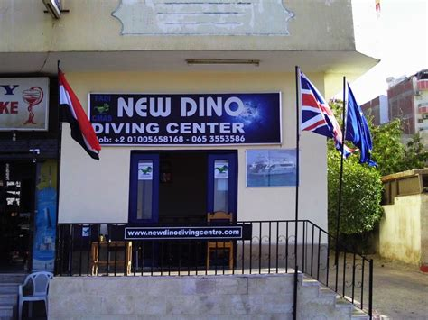 dive centres new dino diving centre dive center in hurghada