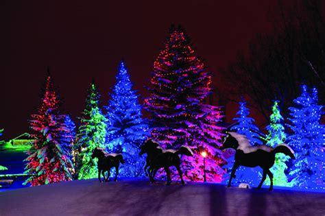 christmas lights aglow at spruce meadows calgary news