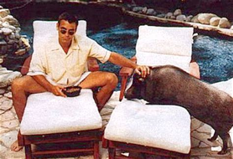George Clooney Mourns His Dead Pig by Pig Breaks George S Dailytelegraph Au