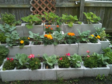 cinder block raised bed then house decor