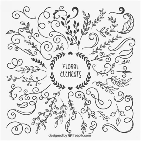 hand drawn design elements vector hand drawn floral elements vector free download