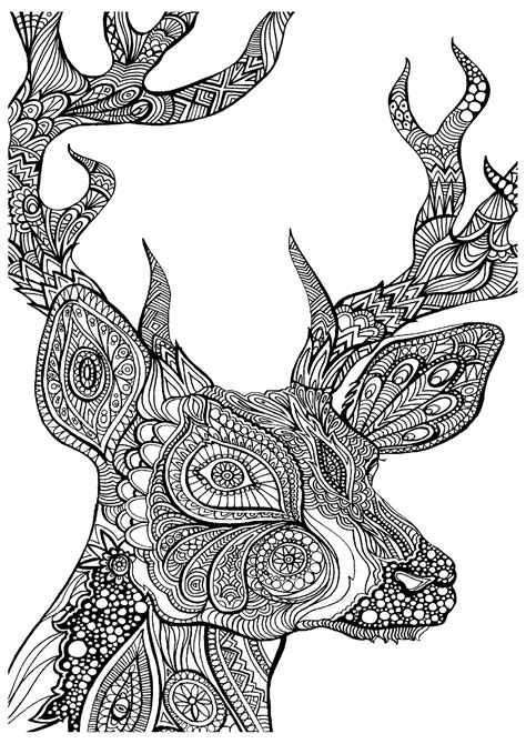 Complex Coloring Pages Of Animals Coloring Home Complex Coloring Pages For