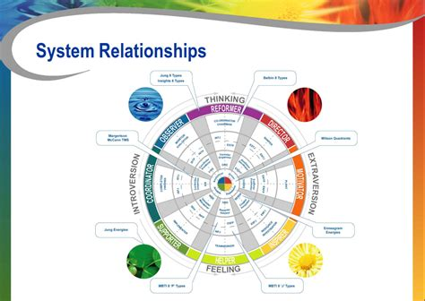 relationships between mbti disc and insights richard sivers associates disc