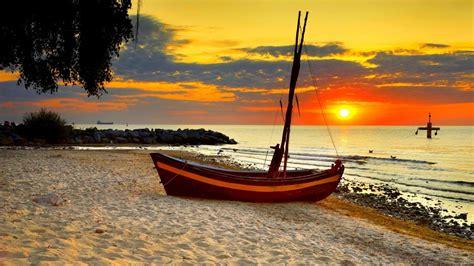 beach birds boat morning sunset tree wallpaper hd beach