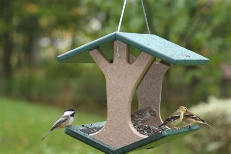 birds choice recycled hanging fly thru bird feeder