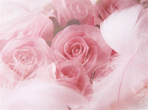 wallpaper romantic pink wedding photography pink wedding flowers cozy and