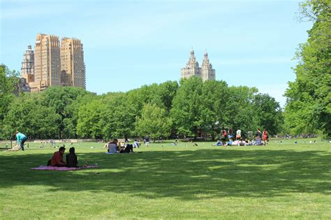 best parks best nyc parks for walking a picnic and sports