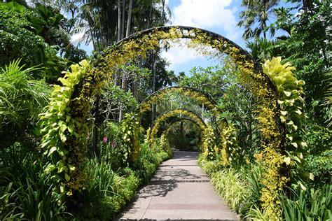 How To Go To Botanic Garden Tour Singapore Botanic Gardens