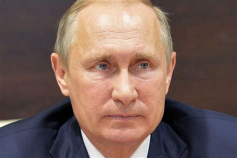 biography vladimir putin arctic thaw blamed for three new cases of anthrax as
