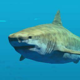 tiger shark | stranded deep wiki | fandom powered by wikia