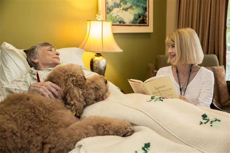 comfort home care ma image gallery hospice