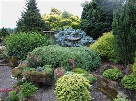Conifer Garden Ideas Conifer Paradise Gardendesignonline