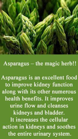 Does Asparagus Detox Your System by 1000 Images About Foods On Benefits Of