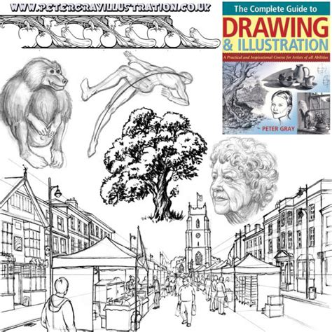 guide to drawing how to draw gray illustration