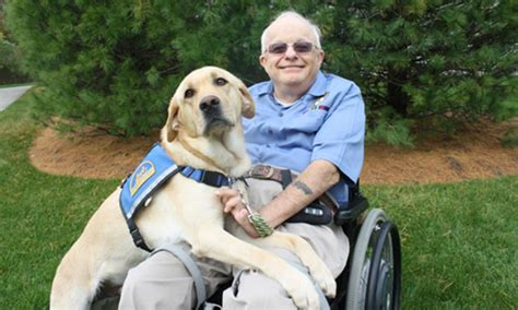 veteran dogs study examines impact of service dogs on veterans with ptsd news stripes