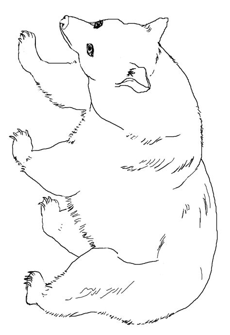 coloring page for black bear american black bear coloring page az coloring pages