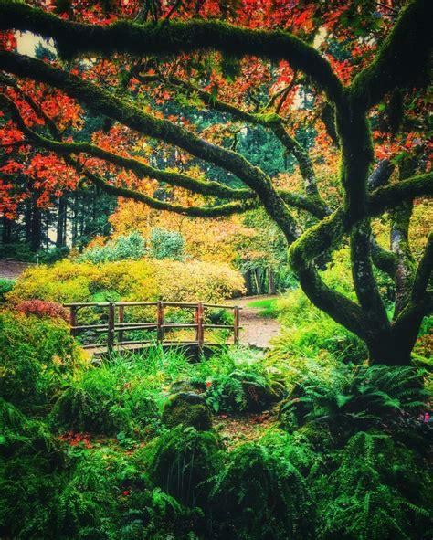 garden  eden  located  beaverton  oregon life
