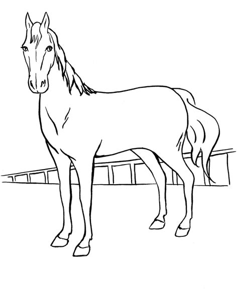 Free Online Coloring Pages Of Horses | free printable horse coloring pages for kids