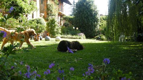 giardino dei semplici cuneo il giardino dei semplici bed breakfast ecosostenibile