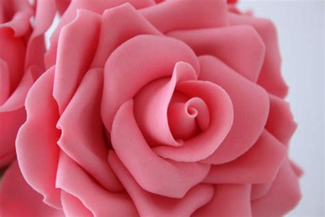 rose can how to make gum paste roses cakejournal com