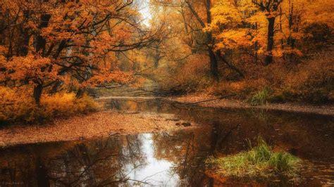 desktop themes autumn free autumn desktop backgrounds wallpaper themescompany
