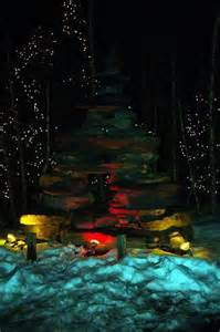 lights at the toledo zoo 17 best images about lights before on