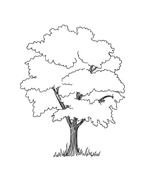Earth Day Coloring Pages Make And Takes Tree Coloring Page Outline