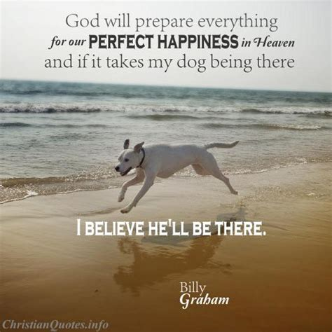 pets in heaven gift for owners billy graham quote dogs in heaven christianquotes info