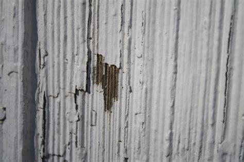 how to paint cedar siding on a house how to paint cedar shake siding on a house ask home design