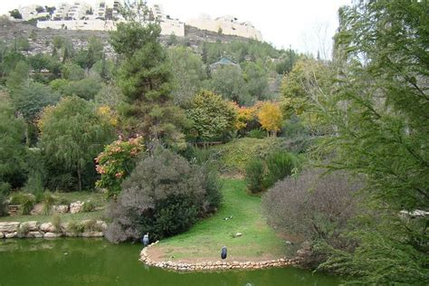 tisch family zoological gardens panoramio photo of israel jerusalem the tisch family