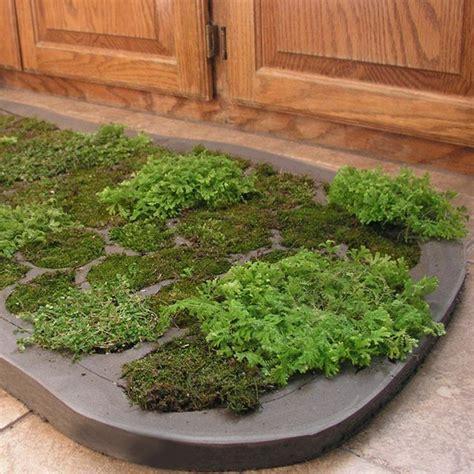 Moss Rug For Bathroom 1000 Ideas About Moss Bath Mats On Bath Mats Shower Mats And Bath