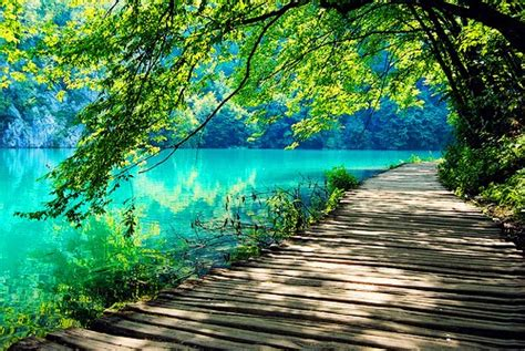 peaceful colors my journey to harmony and inner peace